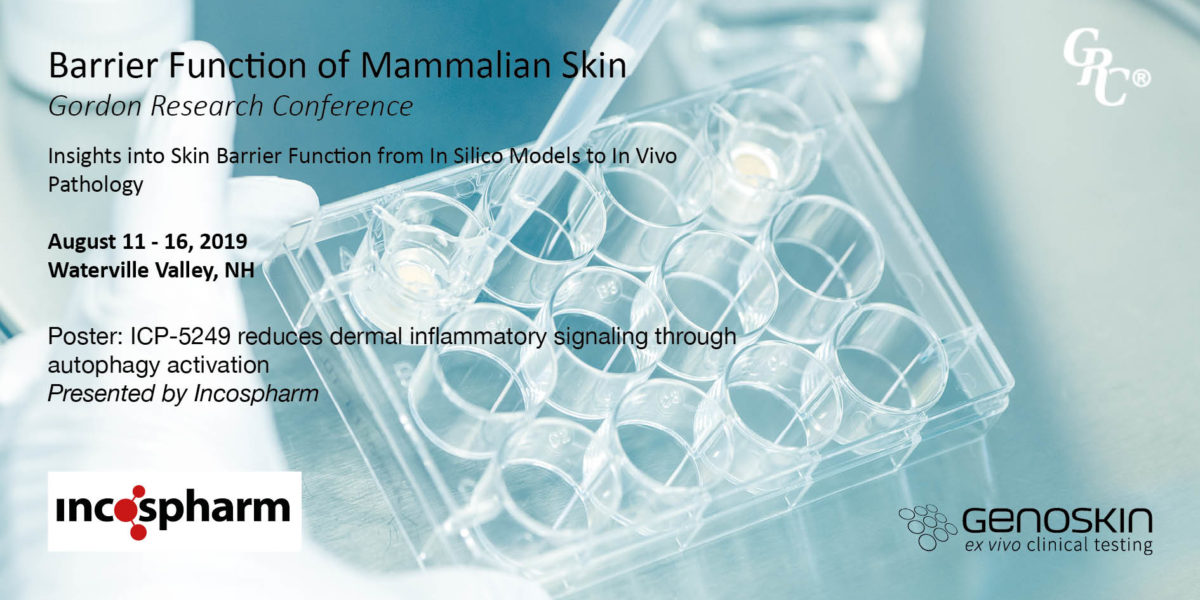 Illustration with Inflammaskin model in the background and a text 'Barrier Function of Mammalian Skin, Gordon Research Conference (GRC)
