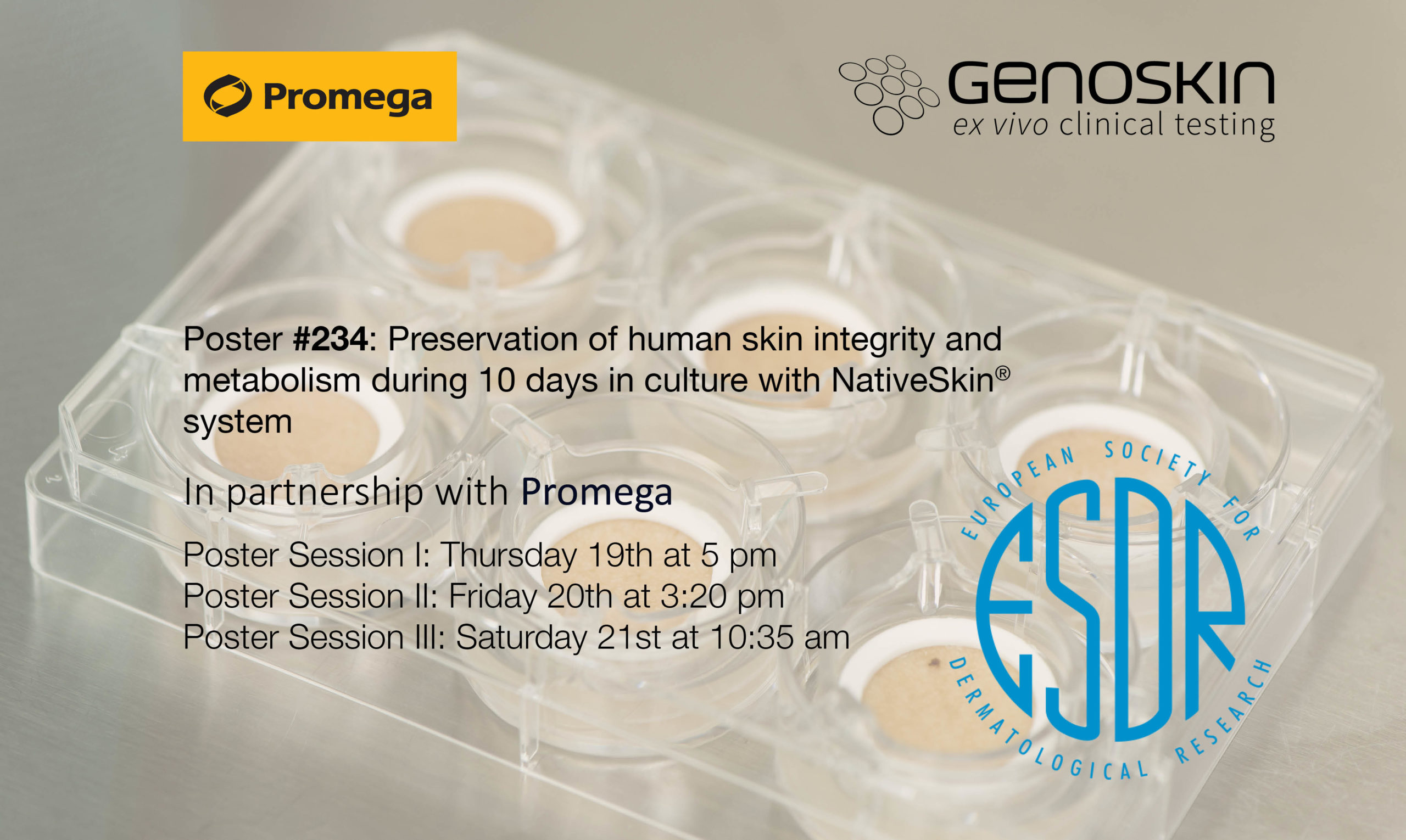 Illustration for ESDR2019 poster in partnership with Promega on metabolism ans skin preservation after 10 days
