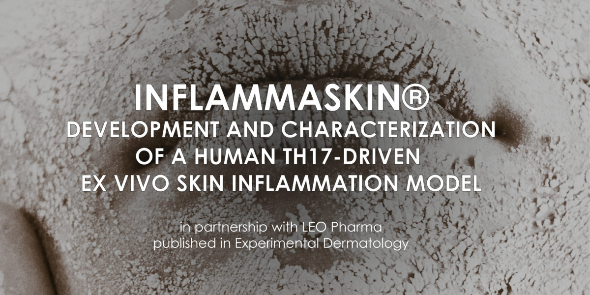 InflammaSkin: development and characterization of a human th17-driven ex vivo skin inflammation model